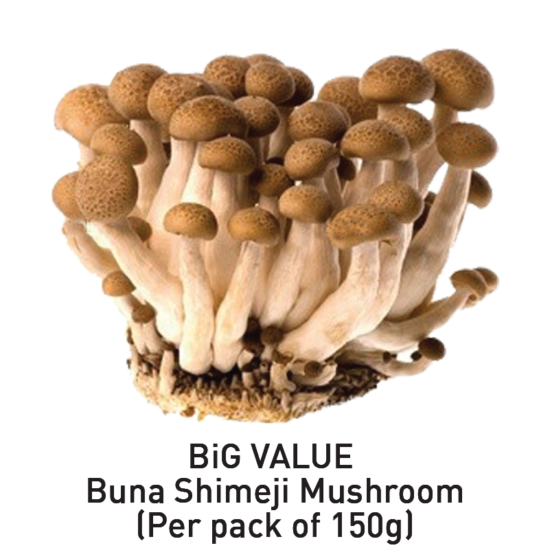 big value buna shimeji mushroom aeon big