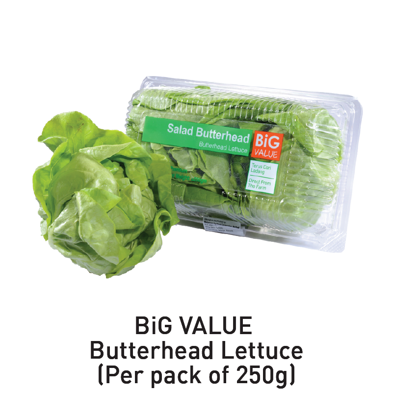 big value butterhead lettuce aeon big